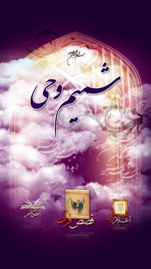 بخش دانستنی های قرآن